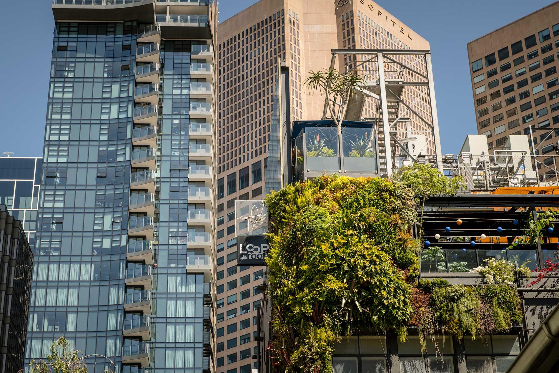 Loop Rooftop Bar & Garden Loop Roof Melbourne