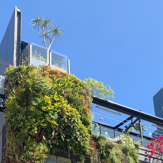 loop-rooftop-bar-greenery
