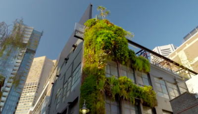 Better-Homes-Gardens-Loop-Roof